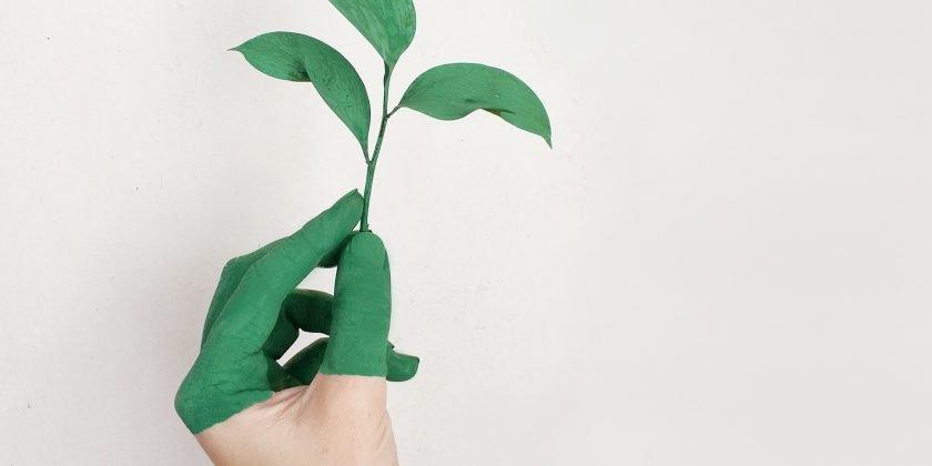 La Strategia delle 3 P per guidare lo sviluppo sostenibile