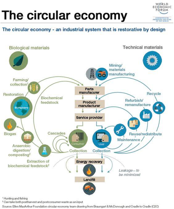 schema circular economy